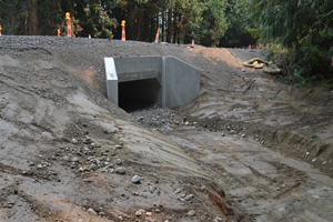 Fish friendly culvert under Seabeck Highway