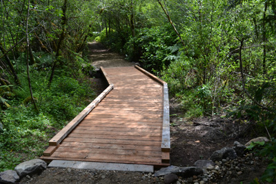 Boardwalk on Bird Meadow trail